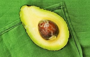 Avokado - 1