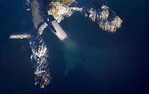 Podvodni restoran Under, Norveška - 3