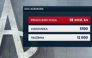 Nagodba u Agrokoru dovedena u pitanje (Foto: Dnevnik.hr)