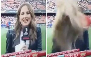 Reporterka dobila loptu u glavu (Foto: Screenshot)