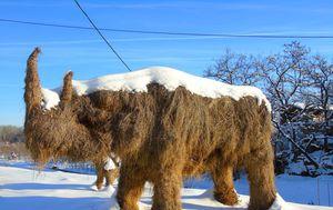 Dolina mamuta, Mohovo - 2