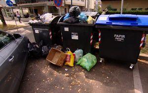 Odvajanje otpada (Foto: Dnevnik.hr) - 4