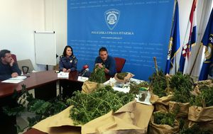 Kraj Pule otkrivena plantaža marihuane (Foto: PU Istarska)