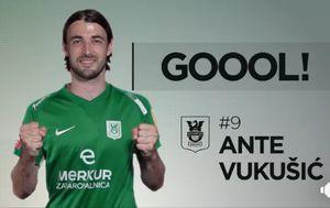 Ante Vukušić (Screenshot: Facebook)
