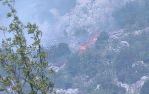 Vatrogasci i dalje na požarištima u Dalmaciji (Foto: Dnevnik.hr) - 1