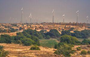 Thar pustinja, Indija/Pakistan - 8
