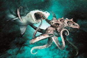 Dvoboj morskih nemani