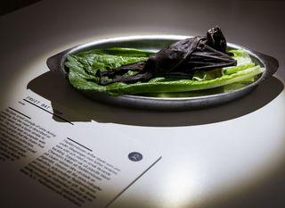 Museum of disgusting foods - 13