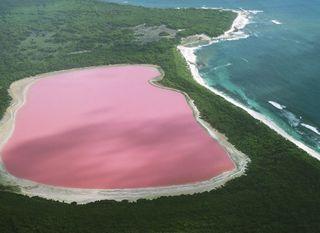 Ružičasto jezero u Australiji