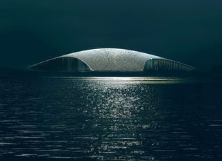 The Whale by Dorte Mandrup - 3