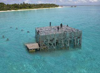 Podvodna galerija na Maldivima - 9