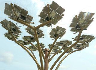 Solarno stablo - 6