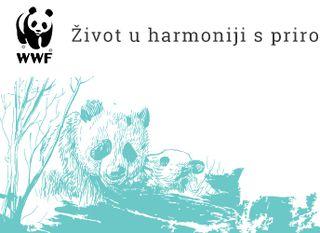 WWF trakica