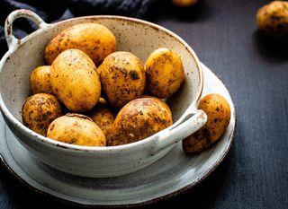 Krumpir