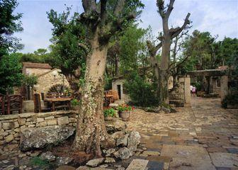 Dalmatinsko etno selo - 2