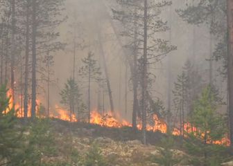 Požari u Švedskoj (Foto: Dnevnik.hr)