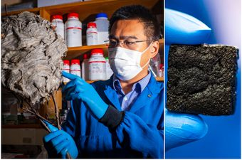 Profesor Yi Zheng sa sveučilišta Northwestern od gnojiva napravio filter za pročišćavanje morske vode u pitku vodu
