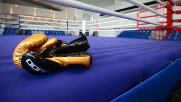 Otvaranje hrvatskog boksačkog centra na Velesajmu