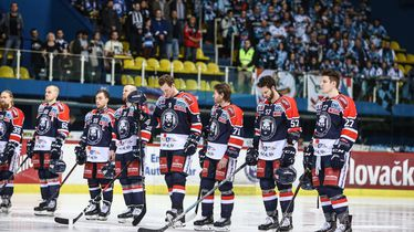 Hokejaši Medveščaka (Foto: Igor Šoban/PIXSELL)