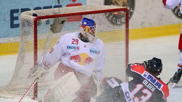 Medveščak - Red Bulls Salzburg