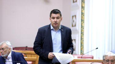 Nikola Grmoja (Foto: Patrik Macek/PIXSELL)