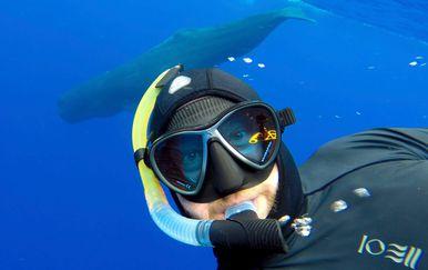 Ronilac snimio selfieje s morskim životinjama (Foto: Profimedia)