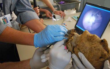 FBI riješio misterij star 4000 godina: Otkriveno kome pripada glava pronađena u egipatskoj grobnici (Foto: Boston Museum of Fine Arts)