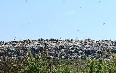 Dubrovački otpad (Foto: Dnevnik.hr) - 5