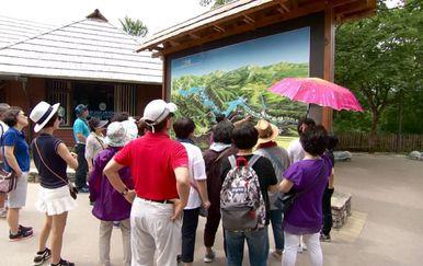Kineski turisti sve brojniji (Foto: Dnevnik.hr) - 1