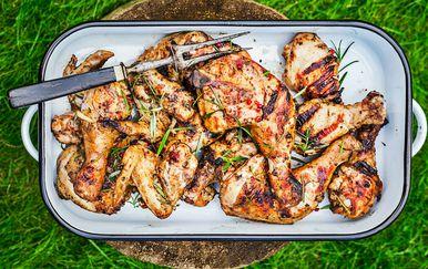 Piletina s roštilja