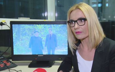 Dr.sc. Gabrijela Kišiček, komunikacijska stručnjakinja (Foto: Dnevnik.hr)