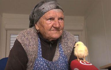 Sofija Gačić - 1