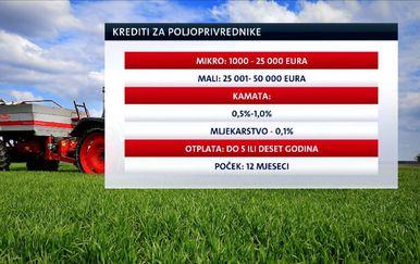 Najpovoljniji poljoprivredni krediti (Foto: Dnevnik.hr) - 1