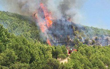 Požar kod Omiša (Foto: Čitatelj)