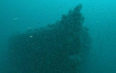Vis: zlato na potonulom brodu? (Foto: Dnevnik.hr) - 1