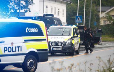 Norveška policija (Foto: AFP)