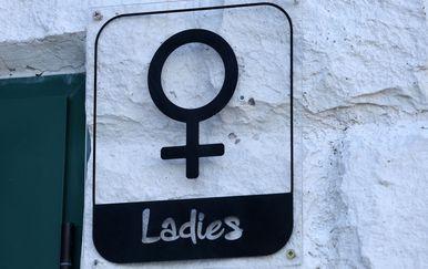 Ženski toalet, ilustracija (Foto: Goran Kovacic/PIXSELL)
