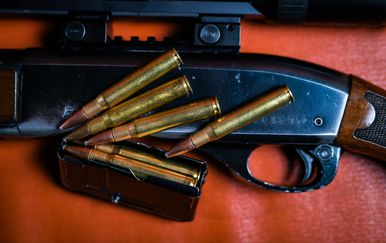 Puška i streljivo, ilustracija