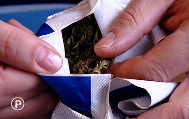 Marihuana (Foto: Provjereno)
