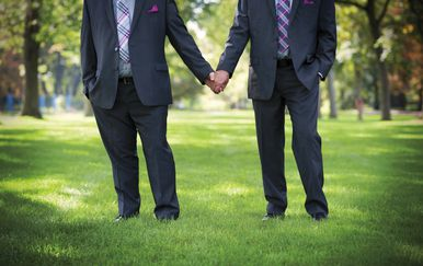 Istospolni brak, Ilustracija