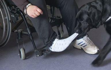 Pas pomagač (Foto: Dnevnik.hr) - 1