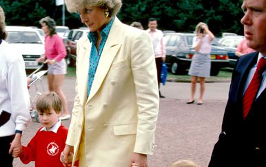 Princeza Diana i princ William