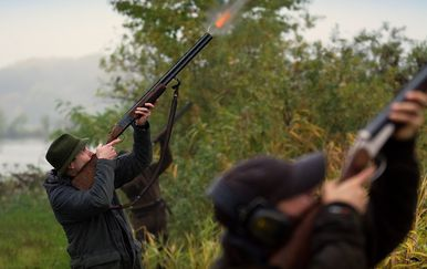 Guska je lovcu izbila prednje zube (FOTO: Profimedia)