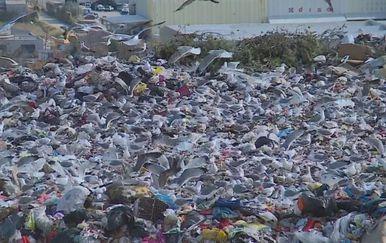 Kemikalijama protiv smrada Karepovca (Foto: Dnevnik.hr) - 3