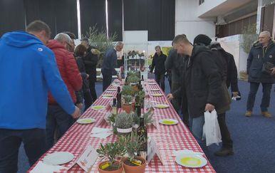 Festival maslina (Foto: Dnevnik.hr)