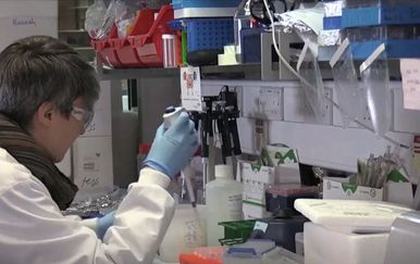 Liječnici proučavaju nove sojeve koronavirusa - 1