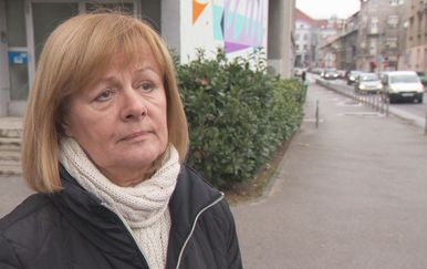 Željka Antunović, članica Odbora za obranu i bivša ministrica obrane (Foto: Dnevnik.hr)