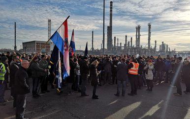 Prosvjed u Sisku (Foto: Dnevnik.hr)