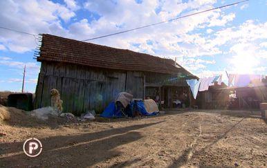 Tročlana obitelj živi u štali s bolesnom kćeri (Foto: Dnevnik.hr) - 7
