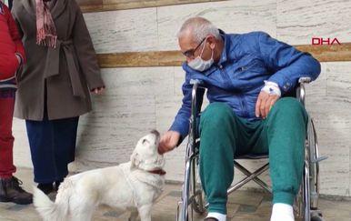 Vjerna kujica danima čekala vlasnika ispred bolnice - 2